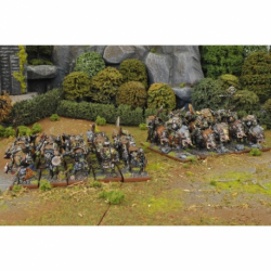 Orc one player battle box (30 figurines, en anglais)