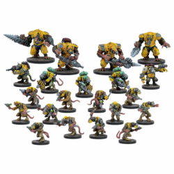 Veer-Myn, faction de démarrage (21 figurines)